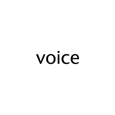 Voice (SE)